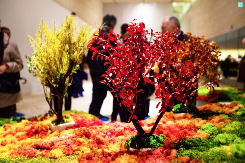 "San Telmo Museoa Presenta ""Un Jardín Japonés"""