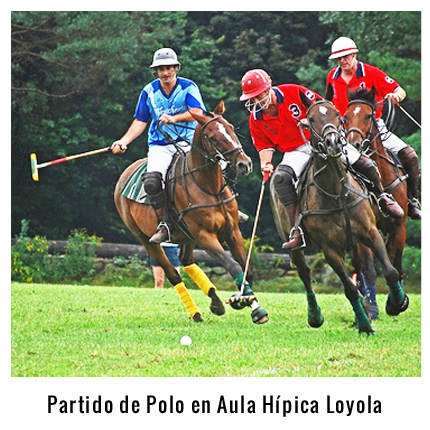 Partido de Polo Escoba en el Aula Hípica de Loyola