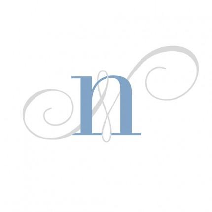 Wedding Planner: Nuevo, Azul y Prestado