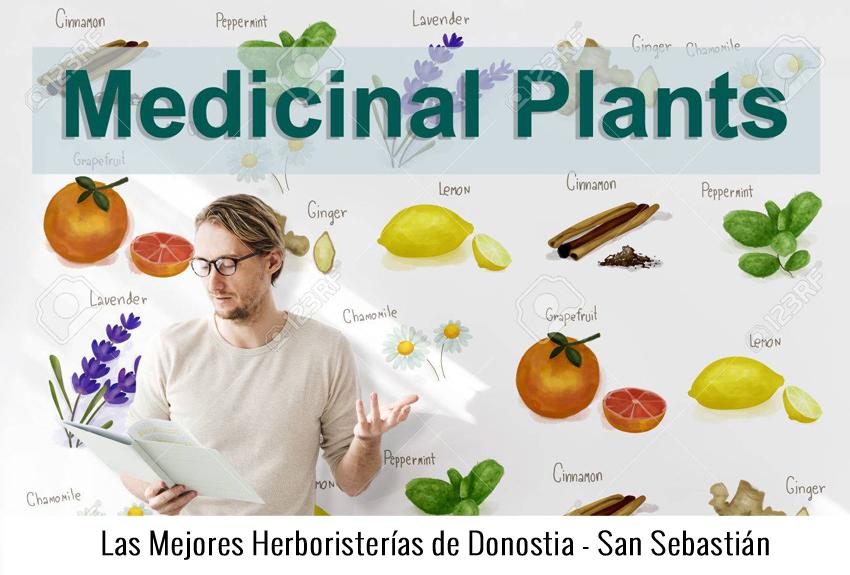 6 Mejores Herboristerías y Dietéticas de San Sebastian